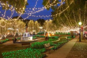 Light Up Mount Dora @ Donnelly Park
